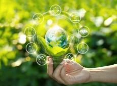 Innovatie klimaat