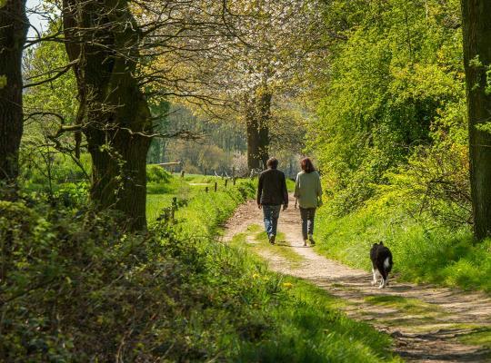 wandelen groen park
